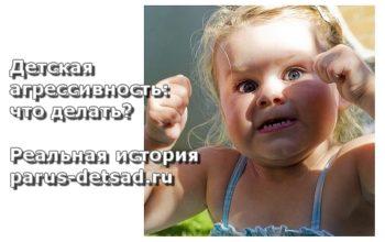 detskaya-agressiya